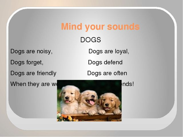 Mind your sounds DOGS Dogs are noisy, Dogs are loyal, Dogs forget, Dogs defen...