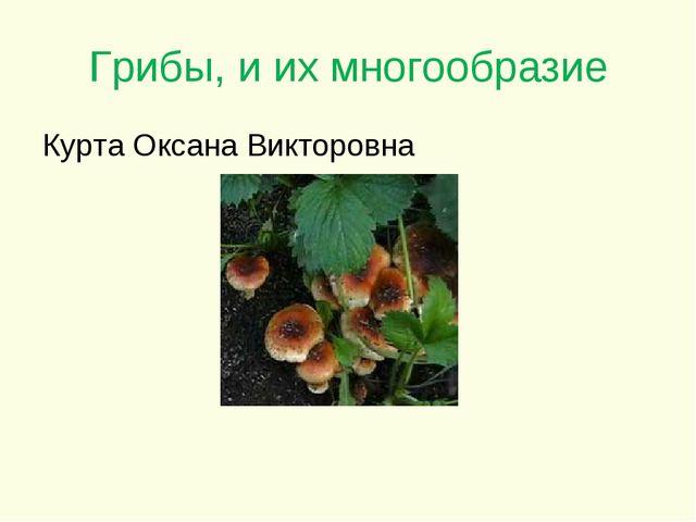 Грибы, и их многообразие Курта Оксана Викторовна