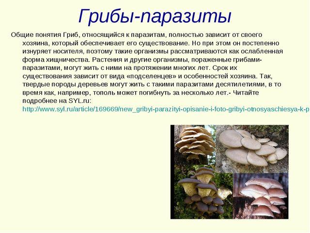 Грибы-паразиты Общие понятия Гриб, относящийся к паразитам, полностью зависит...