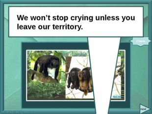 We (not stop) crying unless you (leave) our territory. Check We won't stop c