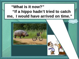 "next pngimg.com ""What is it now?"" ""If a hippo (not try) to catch me, I (arri"