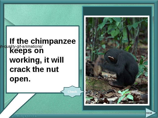 If the chimpanzee (keep on) working, it (crack) the nut open. If the chimpan...