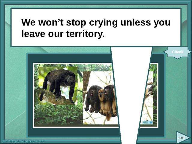 We (not stop) crying unless you (leave) our territory. Check We won't stop c...