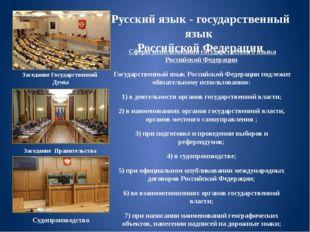 Русский язык - государственный язык Российской Федерации Сферы использования