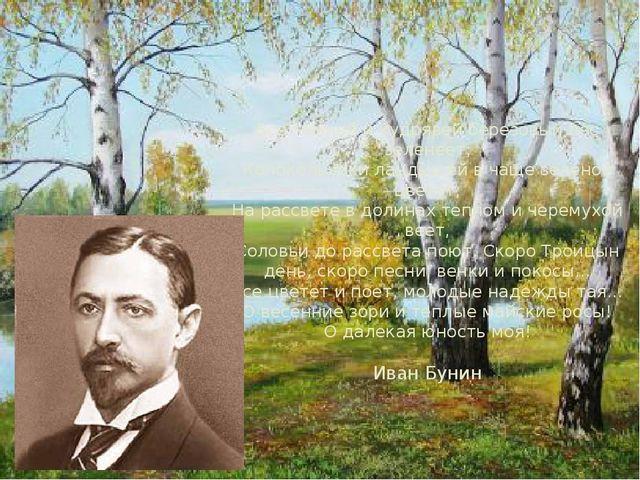 Все темней и кудрявей березовый лес зеленеет; Колокольчики ландышей в чаще зе...
