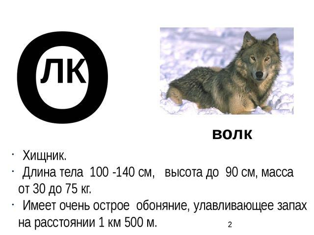 О ЛК волк Хищник. Длина тела 100 -140 см, высота до 90 см, масса от 30 до 75...