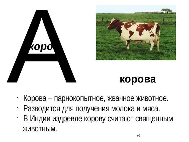 корова Корова – парнокопытное, жвачное животное. Разводится для получения мол...