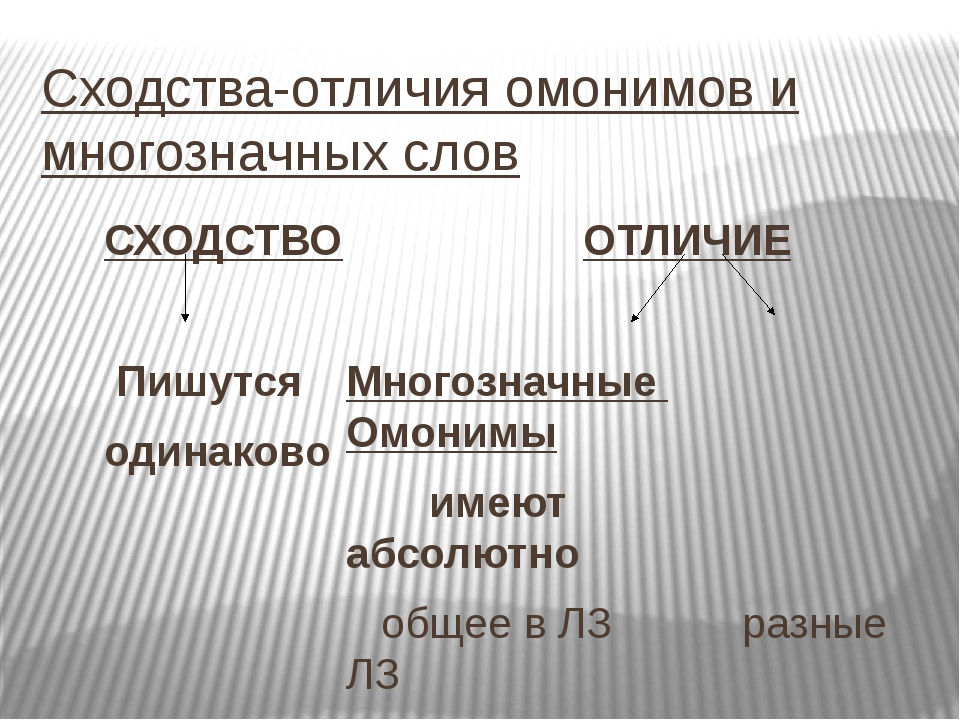 Сходства-отличия омонимов и многозначных слов СХОДСТВО Пишутся одинаково ОТЛИ...