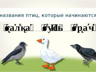 Запишите названия птиц, которые начинаются с буквы г.
