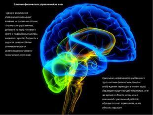Влияние физических упражнений на мозг Однако физические упражнения оказывают