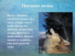Питание волка Волк – хищник, охотится ночью. Ест мясо, птицу, любит рыбу. Ког