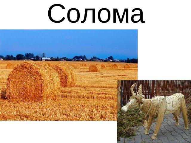 Солома