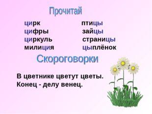 цирк птицы цифры зайцы циркуль страницы милиция цыплёнок В цветнике цветут цв