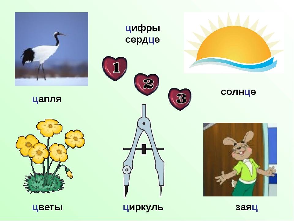 цапля цветы цифры сердце солнце циркуль заяц
