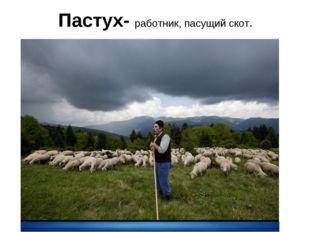 Пастух- работник, пасущий скот.