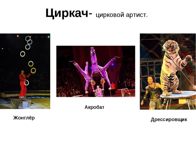 Циркач- цирковой артист. Акробат Дрессировщик Жонглёр
