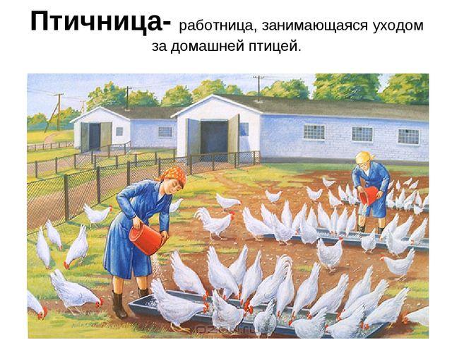Птичница- работница, занимающаяся уходом за домашней птицей.