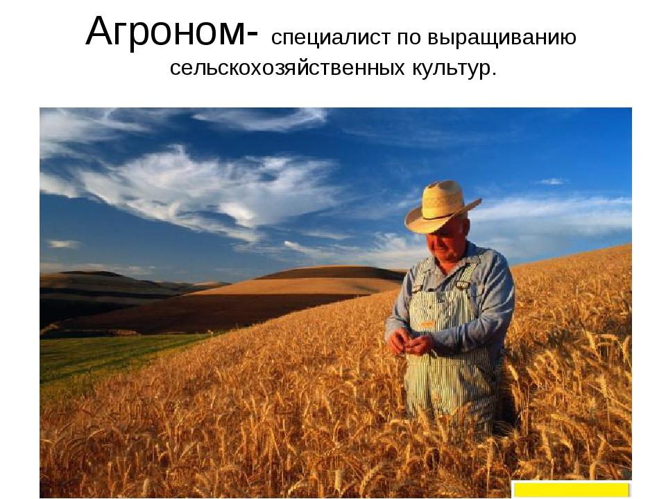 Агроном- специалист по выращиванию сельскохозяйственных культур.