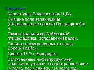 Среди них: Короотвалы Балахнинского ЦБК, Бывшие поля запахивания (складирован