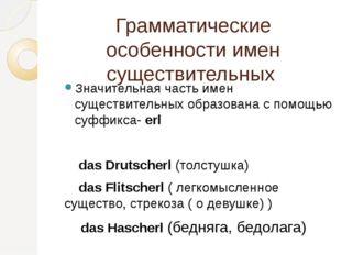 Грамматические особенности имен существительных Значительная часть имен сущес