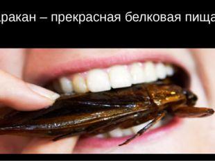 Таракан – прекрасная белковая пища