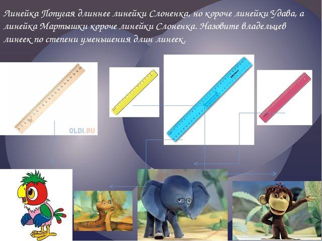 Линейка Попугая длиннее линейки Слоненка, но короче линейки Удава, а линейка...