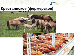 Крестьянское (фермерское) хозяйство КФХ