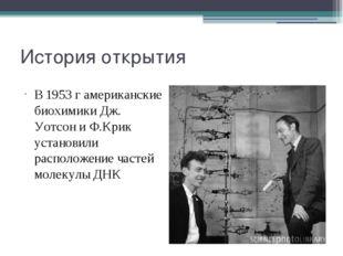 История открытия В 1953 г американские биохимики Дж. Уотсон и Ф.Крик установи
