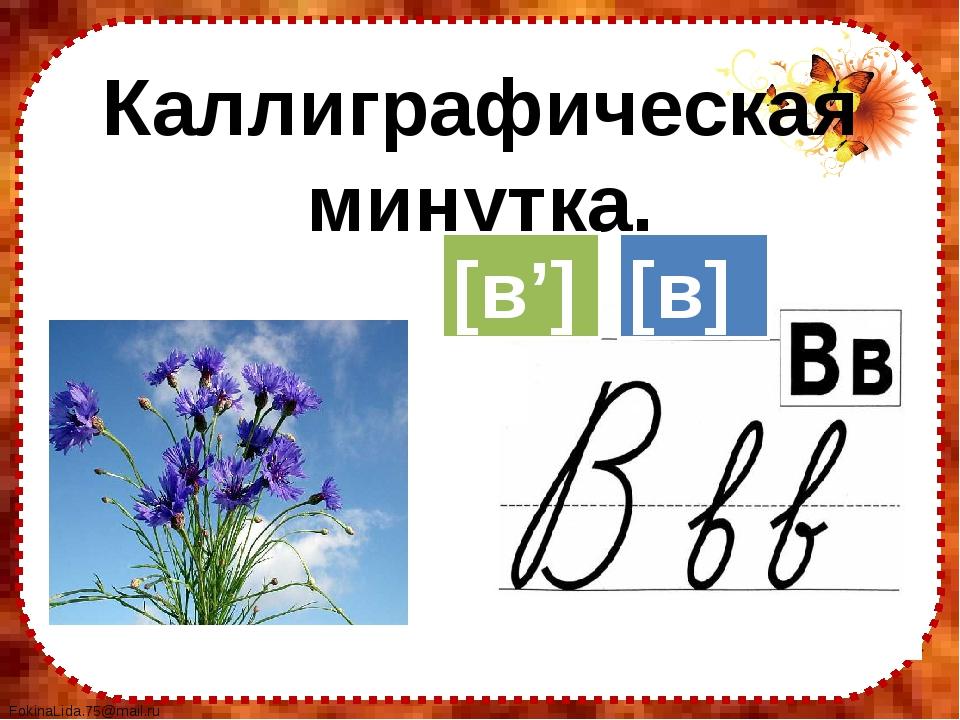Каллиграфическая минутка. [в] [в'] FokinaLida.75@mail.ru
