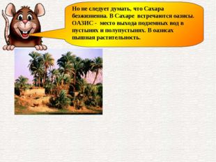 Но не следует думать, что Сахара безжизненна. В Сахаре встречаются оазисы. ОА