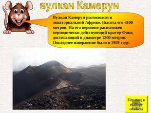 Вулкан Камерун расположен в экваториальной Африке. Высота его 4100 метров. На