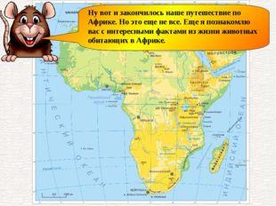Ну вот и закончилось наше путешествие по Африке. Но это еще не все. Еще я поз