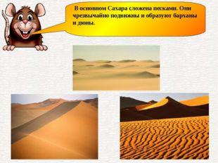 В основном Сахара сложена песками. Они чрезвычайно подвижны и образуют барха