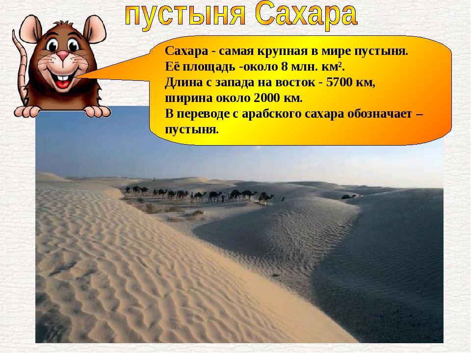 Сахара - самая крупная в мире пустыня. Её площадь -около 8 млн. км². Длина с...