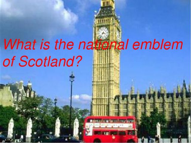 What is the national emblem of Scotland?