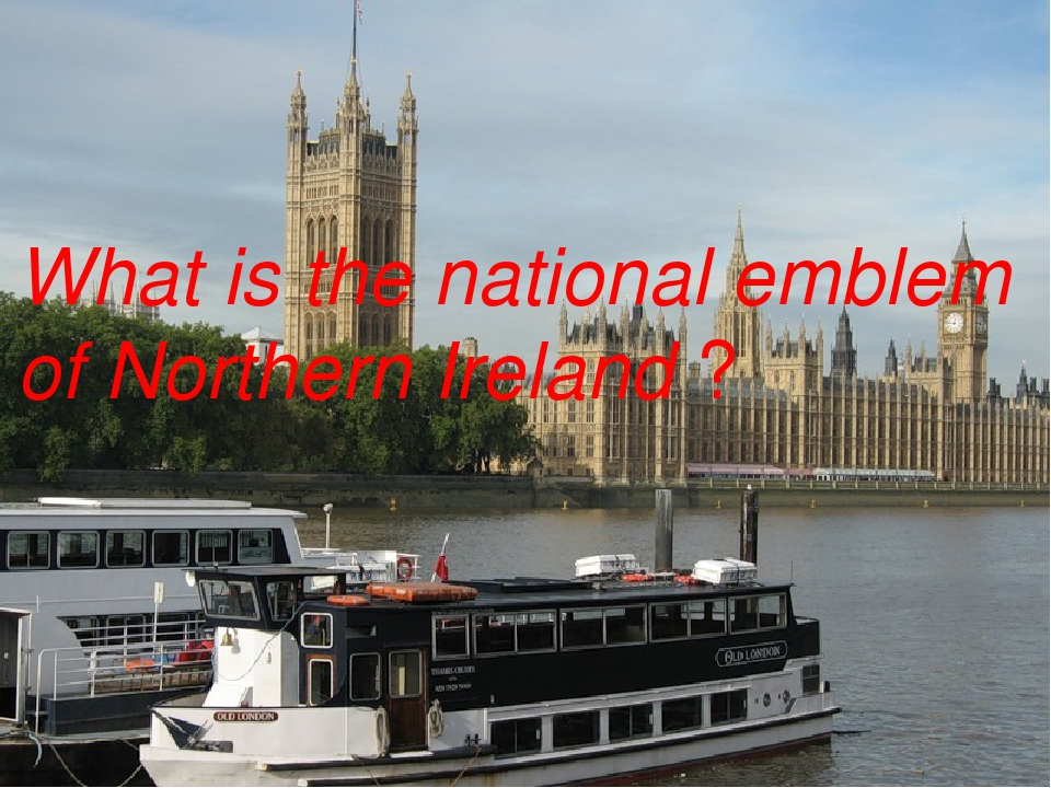 What is the national emblem of Northern Ireland ?