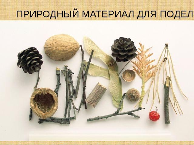 Картинки поделки и природных материалов