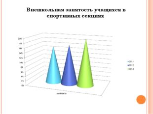Внешкольная занятость учащихся в спортивных секциях  Внешкольная занятость у