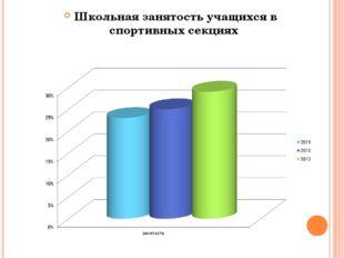 Школьная занятость учащихся в спортивных секциях  Школьная занятость учащихс