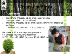 Этапы работы Вычислить площадь одной страницы учебника площадь равна14*21=
