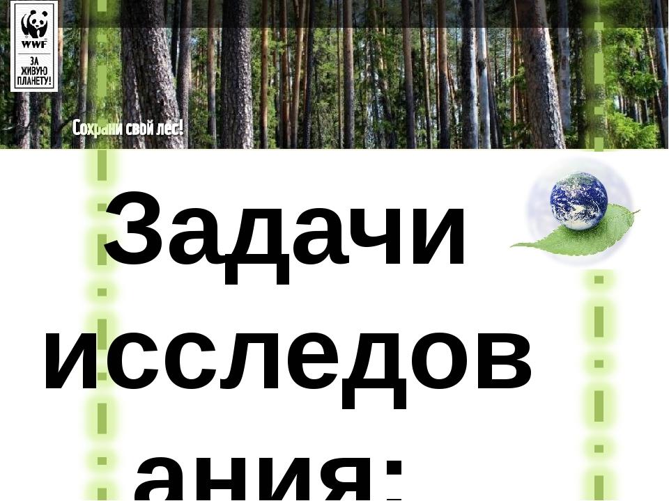 Задачи исследования: Изучить состояние лесов в России в настоящее время. Расс...