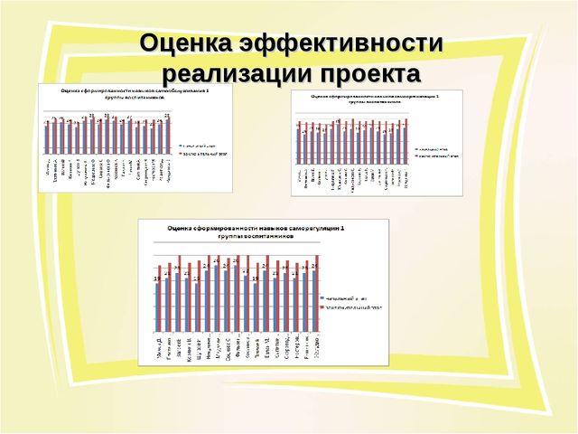 Оценка эффективности реализации проекта