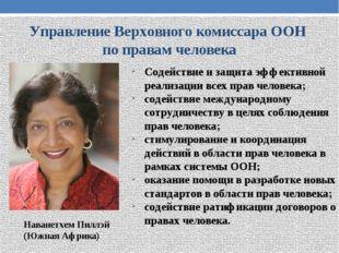 Управление Верховного комиссара ООН по правам человека Содействие и защита эф