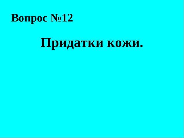 Вопрос №12 Придатки кожи.