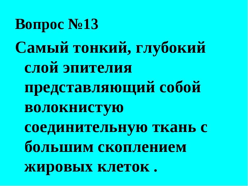 Вопрос №13 Самый тонкий, глубокий слой эпителия представляющий собой волокнис...