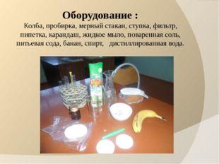 Оборудование : Колба, пробирка, мерный стакан, ступка, фильтр, пипетка, каран