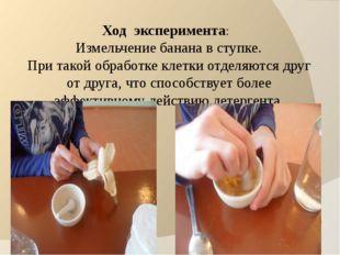 Ход эксперимента: Измельчение банана в ступке. При такой обработке клетки отд