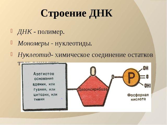 Строение ДНК ДНК - полимер. Мономеры - нуклеотиды. Нуклеотид- химическое соед...