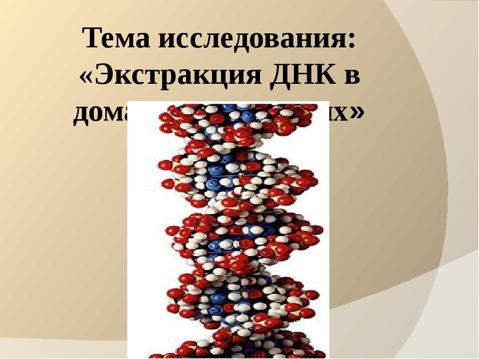Тема исследования: «Экстракция ДНК в домашних условиях»