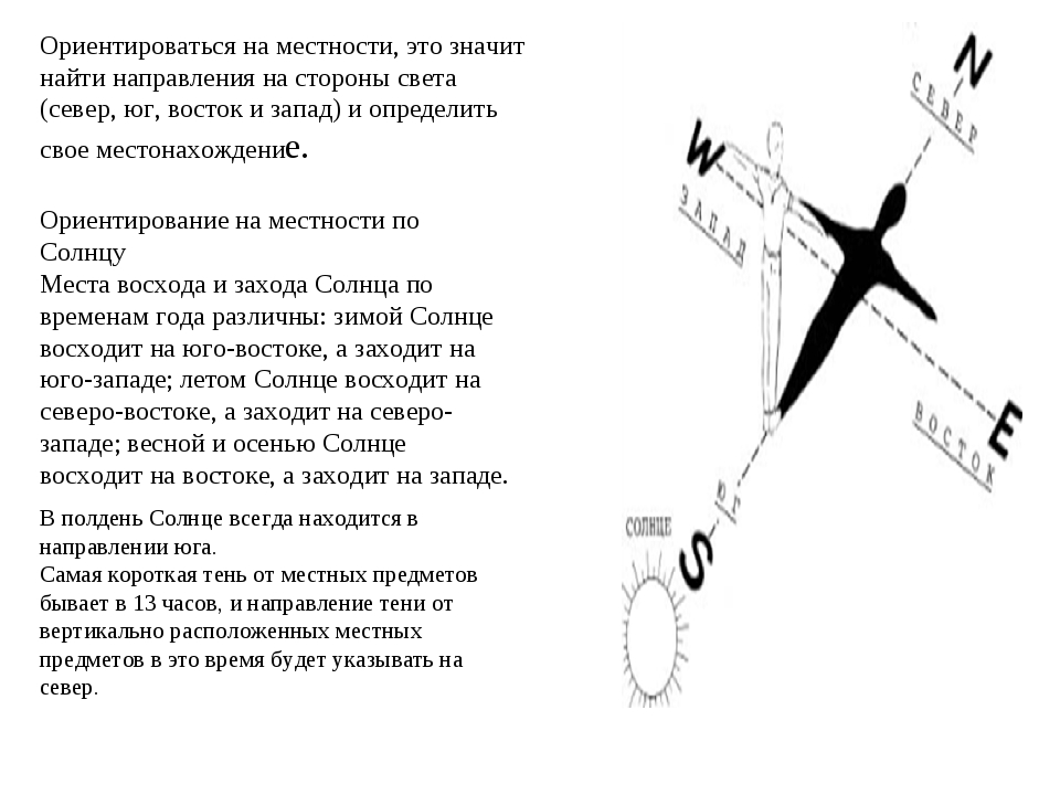 Ориентироваться на местности, это значит найти направления на стороны света (...